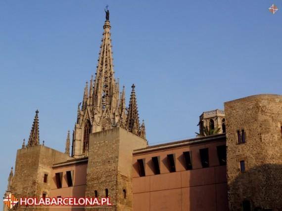 Katedra Swietej Eulalii W Barcelonie
